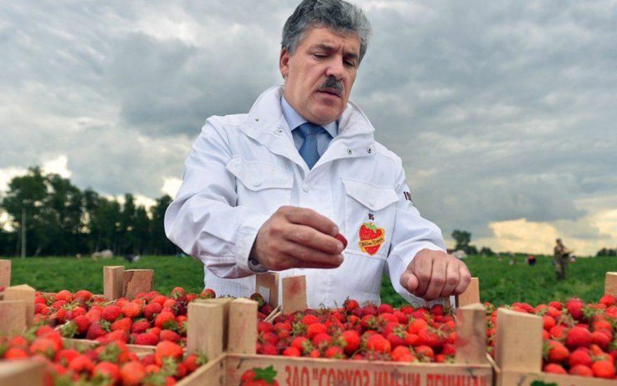 Совхозу имени Ленина запретили продавать клубнику
